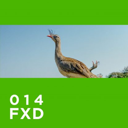 FXD014_Wenner_Cover4